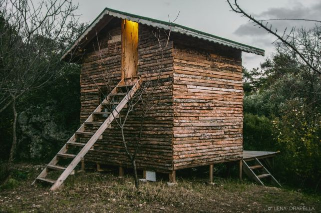 Our lovely wooden home with absolutely no spiders in it
